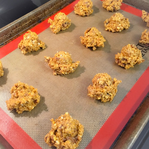Pumpkin Spiced Oatmeal and Pecan Cookies – LaniGettingHealthy